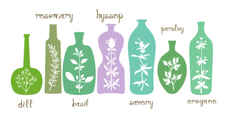 Different bottles with various silhouettes of aromatic plants. Abstract essential oils with dill, basil, oregano, hyssop, parsley, savory, rosemary. Isolated on white background. Hand drawn text. Vector