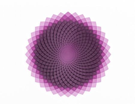 Creative circular flower pattern on white background 写真素材