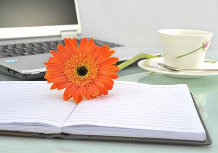 Sunflower office desk and notebook