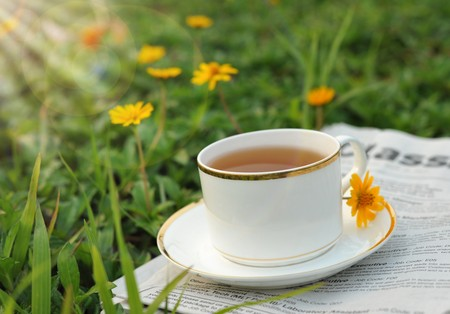 A cup of tea on the lawn