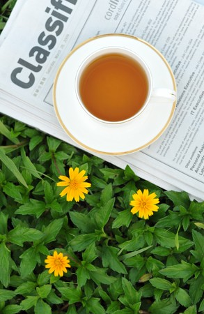 A cup of tea on the lawn photo