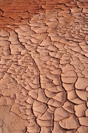 encogimiento: Suelo rojo seco