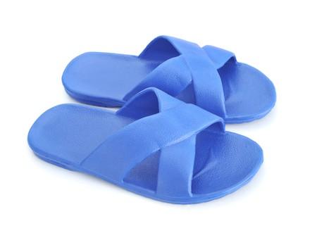 slipper: Vietnamese slipper