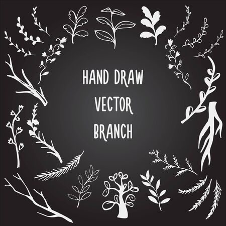 Colección de vectores de rama dibujada a mano estilo pizarra Ilustración de vector