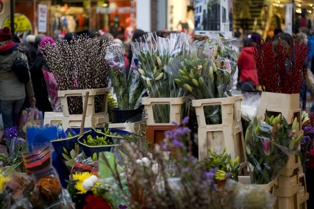 eec: Bunches of flowers at street stall in Dublin