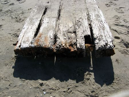 parch: Peaces of Wood on the Beach  Stock Photo