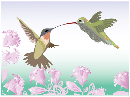 Background with flowers and hummingbirds Иллюстрация