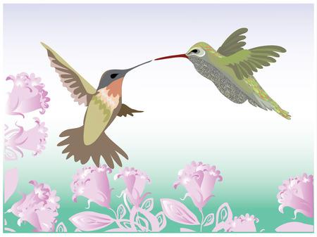 Fondo con flores y colibr�es