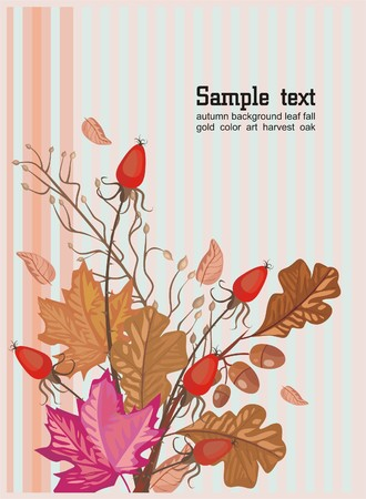 fallin: autumn bouquet Illustration
