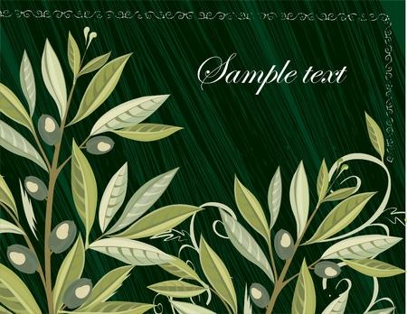 foglie ulivo: sfondo con olive