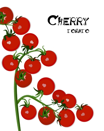 vegetable cook: Cherry tomatoes Illustration