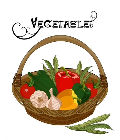 vector drawing of the vegetables in the bascket Vector