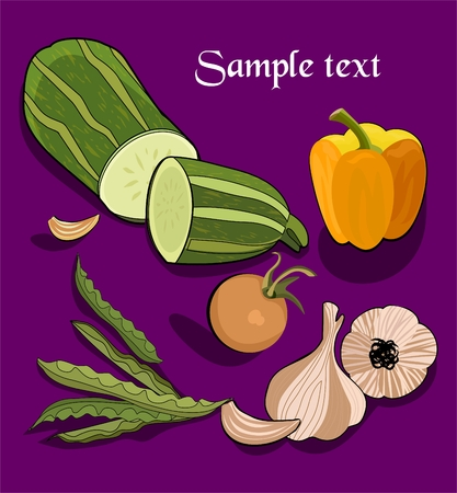 Garlick, squash ,  kidney beans, pepper  and tomato Vector
