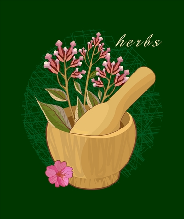 herbal medicine: Background with herbs