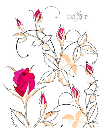Art background with roses Vector