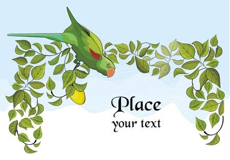 lemon tree: background with green parrot and lemon tree Illustration