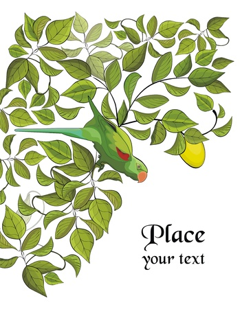 background with green parrot and lemon tree Vector