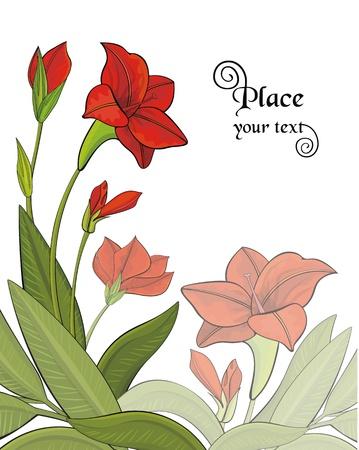 Background with garden flowers Stock Vector - 16767469