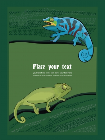 chameleon lizard: Sfondo con camaleonte