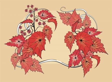 vegetate: Flower background with begonia plant
