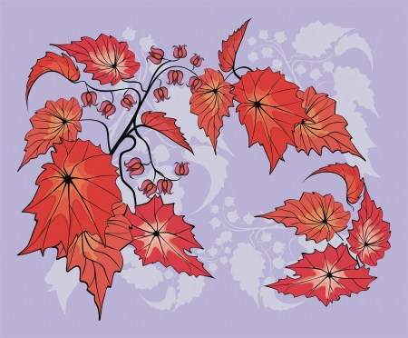 Flower background with begonia plant Stock Vector - 21263930