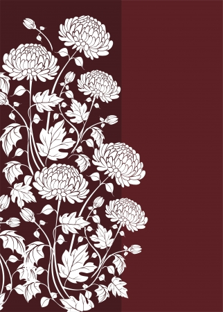 Elegant  flower background with chrysanthemums Vector