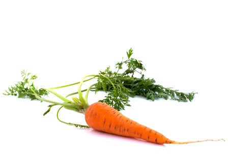 carrots with the leaves on a white background Stock Photo - 7299263