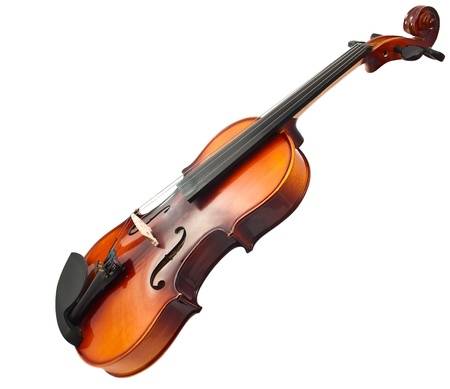 violin on white background photo