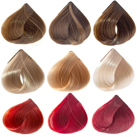 hair samples of different colors Stock Photo - 9309473