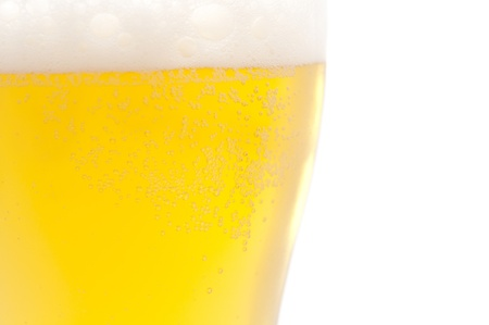 beer on white background photo
