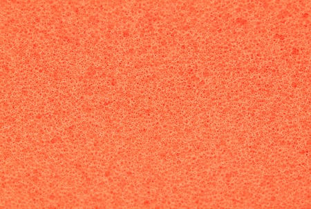 porous: Color porous texture of sponge