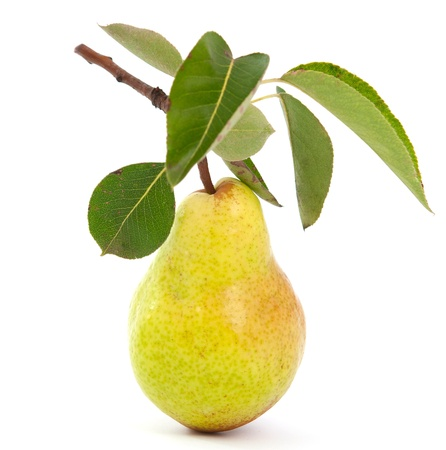 Pear on white background Stock Photo - 10289724