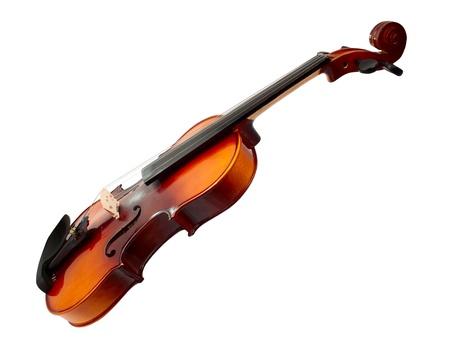 violin on white background photo
