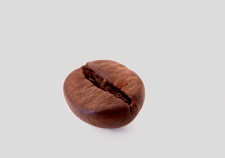 coffee beans on gray background photo