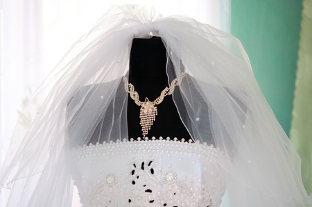 wedding dresses in the store photo