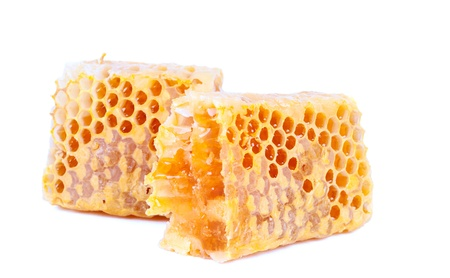 syrupy: honeycomb on a white background