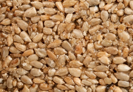 gozinaki: Honey bears with sunflower seeds  - background