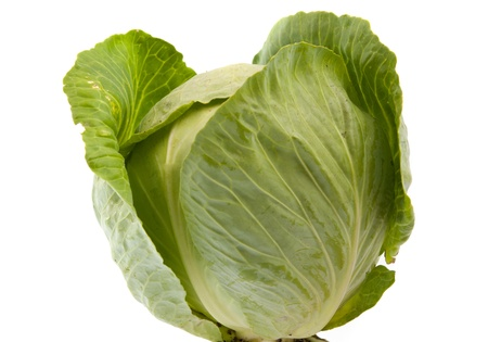 cabbage patch: cabbage on a white background Stock Photo