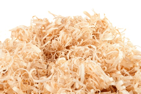 Wood shavings on white background with copy space. Macro with shallow dof. photo