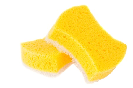 sponge isolated on white background photo