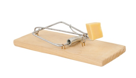 mousetrap with cheese isolated on white background photo