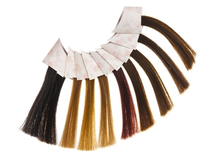 hair samples of different colors Stock Photo - 14977847
