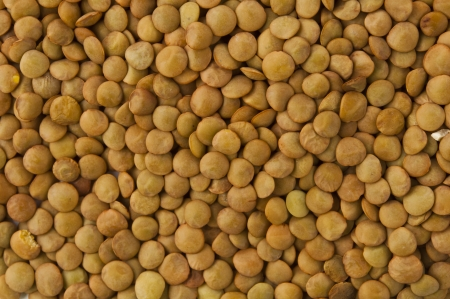Lentil evenly layer background photo