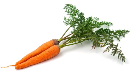 carrots with the leaves on a white background Stock Photo - 18589395
