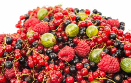 colorful background of mix ripe berries photo