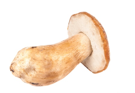 cep: cep isolated on white background Stock Photo