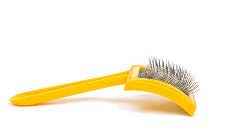 brush for pets isolated on white background photo