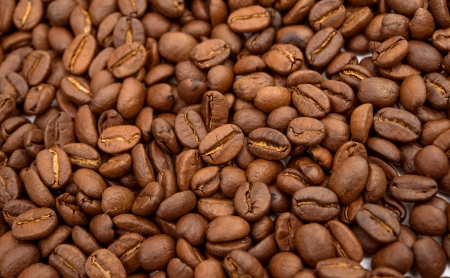 coffee beans background with shallow dof photo