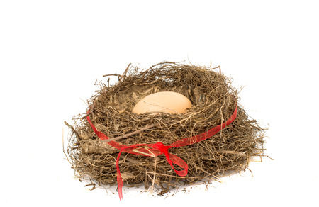 Nest with eggs on a white background photo