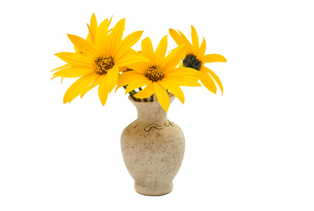 flower vase: yellow flowers in a vase on a white  Stock Photo